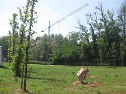 I giardinieri al lavoro al parco del Olmo