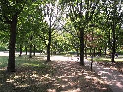 Parco dell'Amicizia