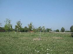 Parco Campo di Marte