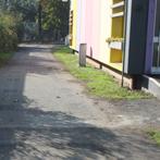immagine del vialetto