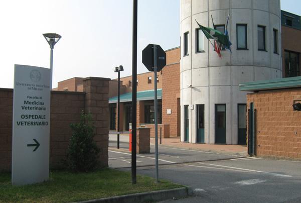 l'ingresso dell'università